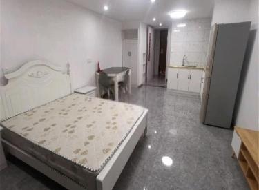 沈阳大学南院旁 精装一居室 着急出租 设施齐全 随时看房