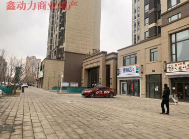 (出售)浑南区门市 新市府板块 碧桂园门市带租售 对街不愁租