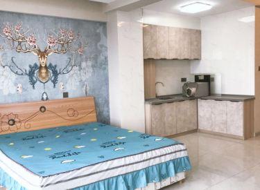 奥园会展 新房出租 精装一居室  拎包入住 随时看房