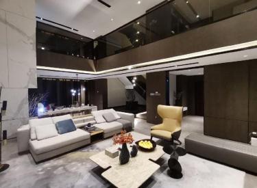 (专属特价)西江街三环7.5米客厅开间联排别墅独门独院