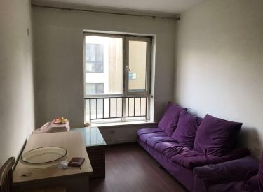 爵仕观邸 1室,星摩尔万达,双地铁,铁西广场,随时看房,急售