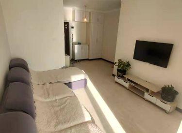顺丰新未来精装两室房,楼层好,采光好,整洁拎包住