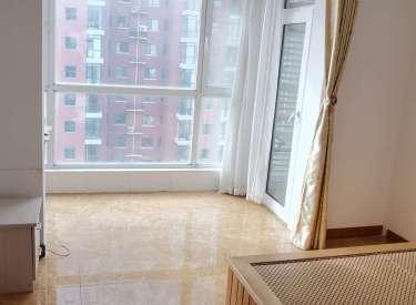 学区房城市玫瑰精装修49平单间封闭园区电梯房