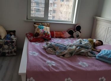 居易V公寓 1室1厅1卫 47㎡