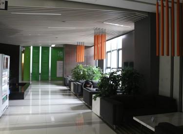 (出租) 浑南区 沈阳国际软件园 220㎡