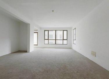 电梯洋房 单价2万 和平一 126 南北通透 富海 有钥匙