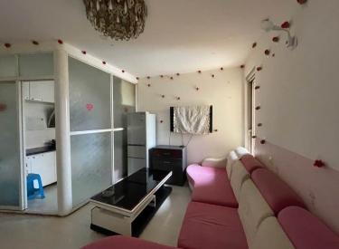顺丰新未来 一室一厅 精装修 拎包即住 卫生干净 有空调