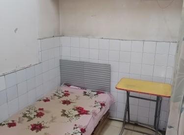 鲁园社区 2室1厅1卫 10㎡