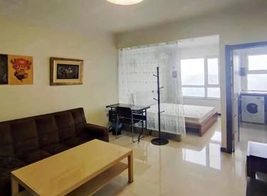丽湾国际 1室1厅1卫 49.2㎡